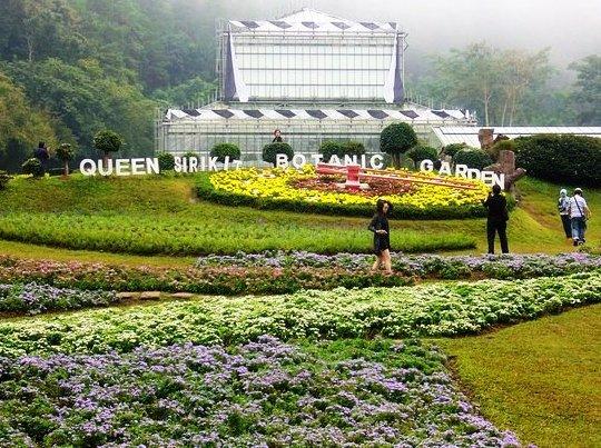 مشهد من أفضل 7 أنشطة في حديقة الملكة سيريكيت النباتية في شنغماي تايلاند