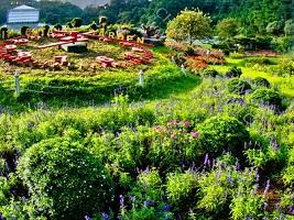 حديقة الملكة سيريكيت النباتية في شنغماي