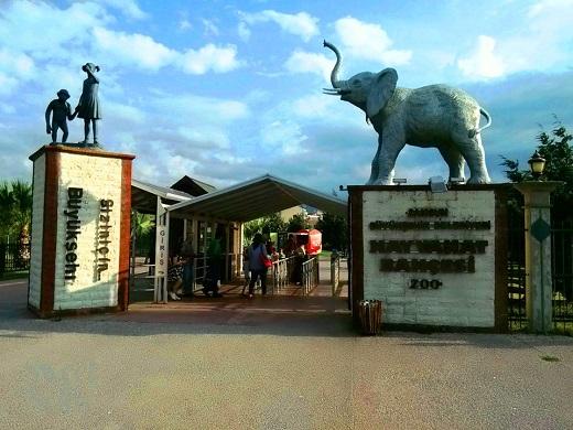 حديقة حيوانات سامسون في تركيا