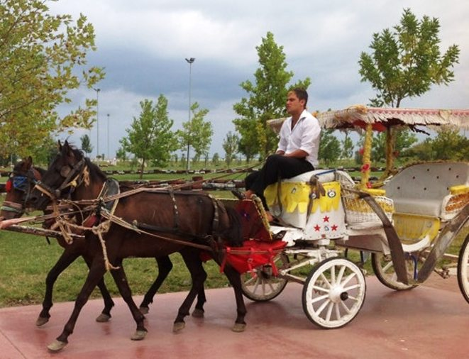 عربات الأحصنة في تلفريك سامسون