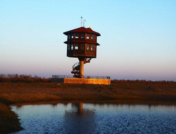 جنة الطيور من اجمل اماكن السياحة في سامسون تركيا