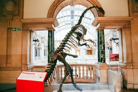 متحف مدينة بريستول