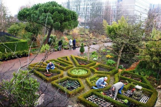 حديقة هورتس بوتانيكس امستردام من افضل حدائق امستردام