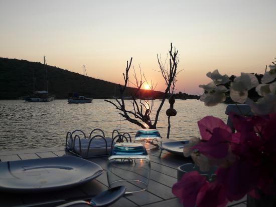 مطعم ميموزا من افضل المطاعم في بودروم تركيا