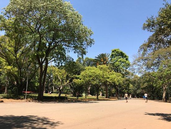 شارع نهج باوليستا من افضل اماكن السياحة في ساوباولو