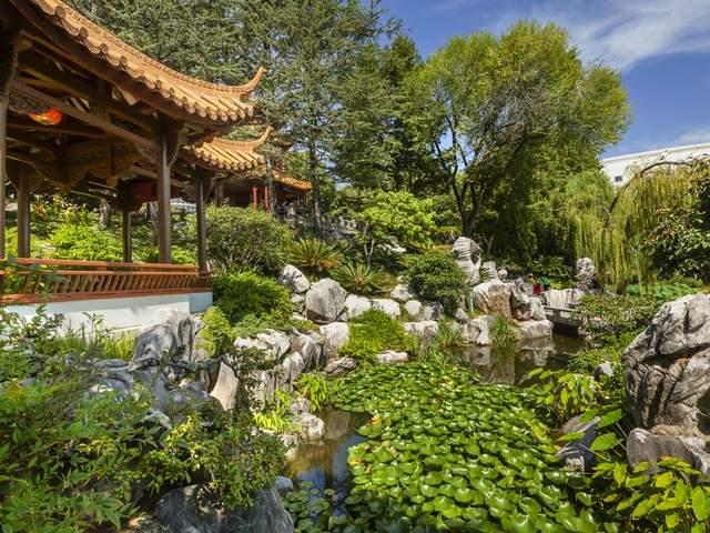 الحديقة الصينية للصداقة من افضل اماكن السياحة في سيدني