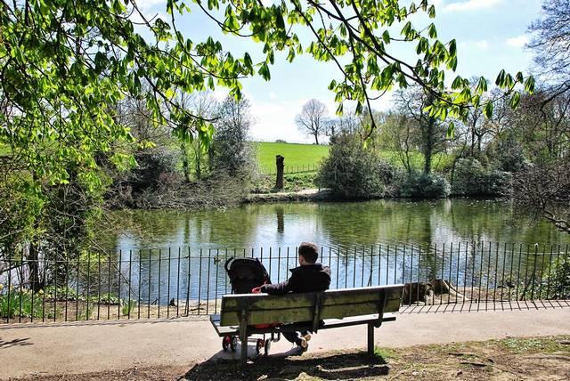 حديقة غريفس بارك من اجمل حدائق شيفيلد بريطانيا