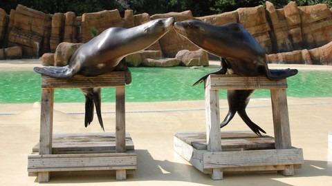 حديقة حيوانات في مدينة بلاكبول انجلترا