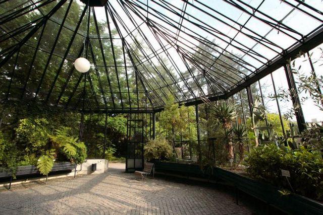 الحديقة النباتية القديمة من اهم اماكن سياحية في زيورخ سويسرا