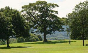 حديقة غريفس بارك في شيفيلد من افضل الاماكن السياحية في شيفيلد انجلترا