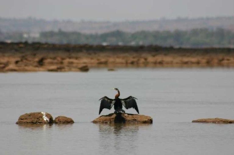 بحيرة تانا من أجمل اماكن سياحية في بحر دار