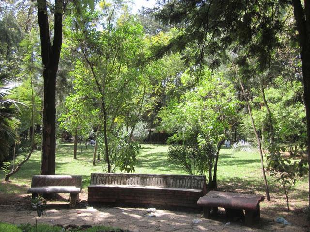 اديس ابابا سياحة حديقة اديس ابابا
