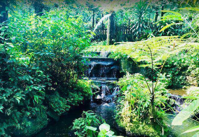 حديقة الفراشات في كوالالمبور من أجمل الحدائق على مستوى العالم