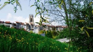 كاتدرائية فرايبورغ من افضل اماكن السياحة في فرايبورغ المانيا