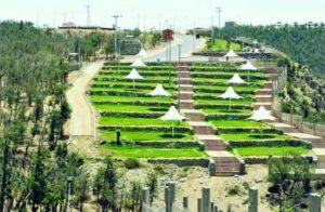 غابة رغدان في الباحة تعتبر من أفضل الاماكن السياحية في الباحة