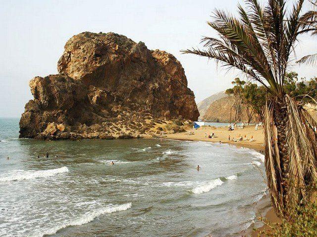 شاطئ الساحل