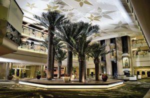 دليل يضم افضل فنادق اسوان المُميّزة
