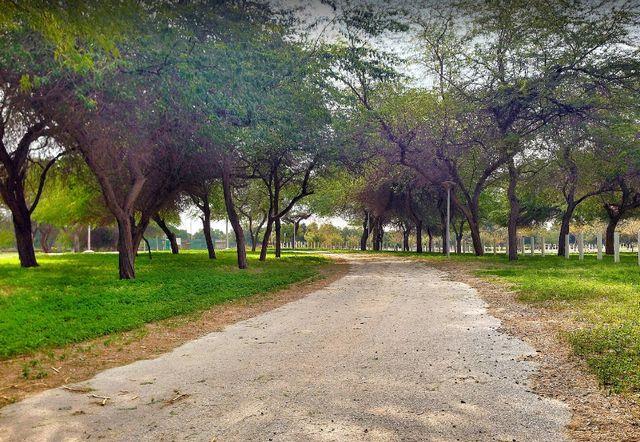منتزه الدفي في الجبيل من اروع المنتزهات السياحية