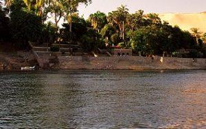 جزيرة النباتات من اهم اماكن السياحة في اسوان
