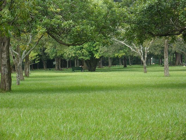 حديقة لال باغ من افضل اماكن السياحة في بنجلور