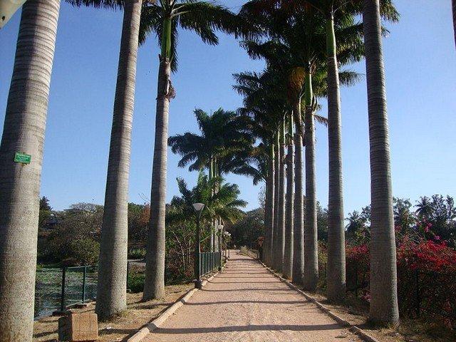 حديقة لال باغ في بنجلور