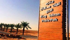 منتزه الملك سلمان البري من افضل اماكن السياحة في الرياض