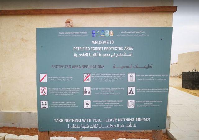 محمية الأشجار المتحجرة بالعين السخنة