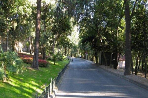 حدائق بمدينة جدة