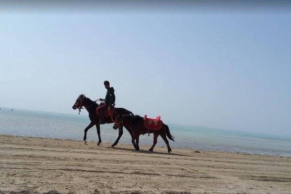 شاطئ السيف في جدة