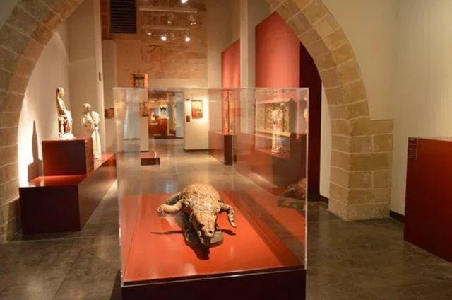 متحف جزيرة مايوركا