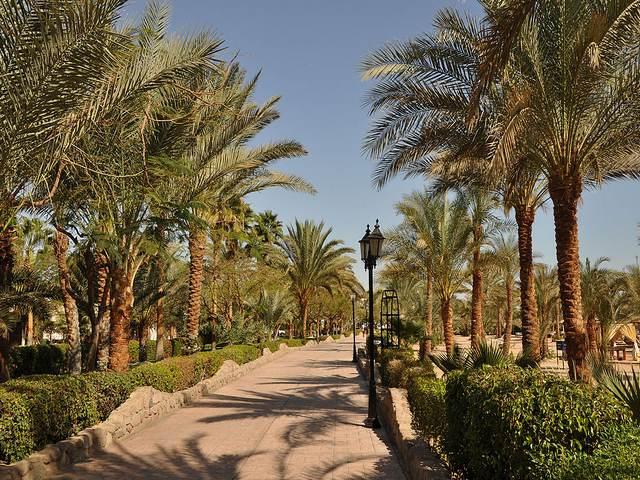 خليج نعمة شرم الشيخ مصر