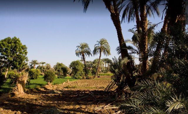 السياحة في مصر الاقصر