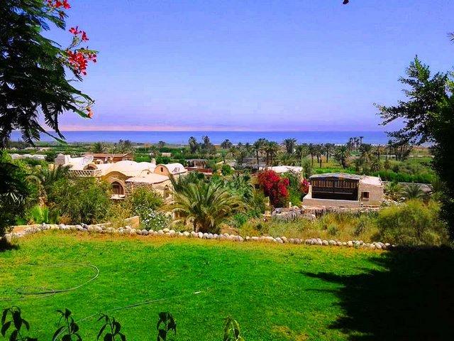 قرية تونس فى الفيوم
