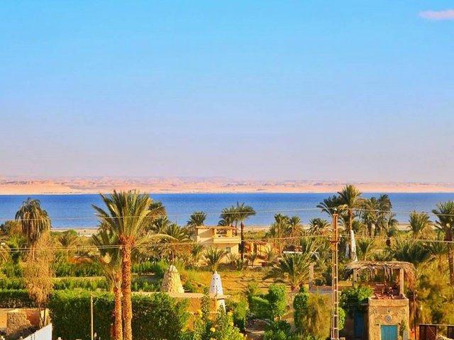 قرية تونس فى الفيوم في مصر