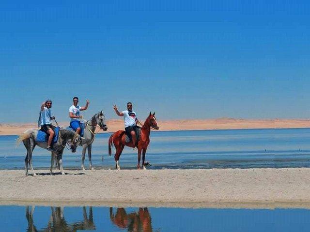 قرية تونس الفيوم