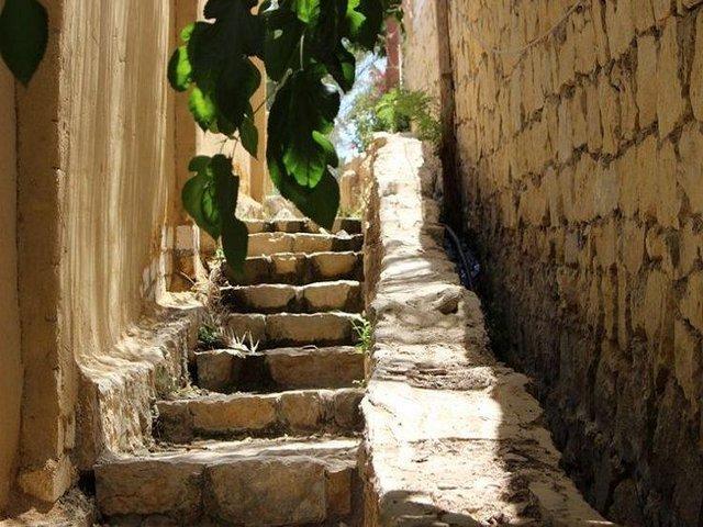 قرية تونس بالفيوم