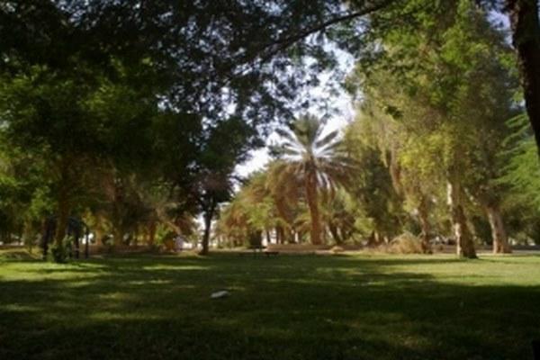 حديقة الملك عبدالله في الرياض