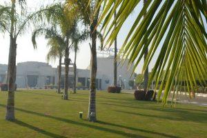 فندق نوفوتيل المطار القاهرة