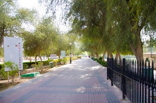 حديقة الحميدية عجمان