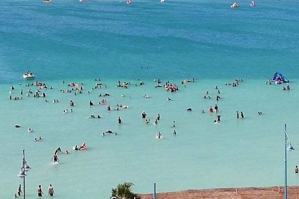 شاطئ النخيل في مرسى مطروح