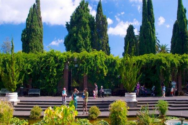 حديقة اوكلاند