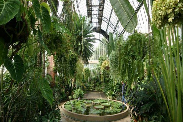 حديقة مدينة اوكلاند