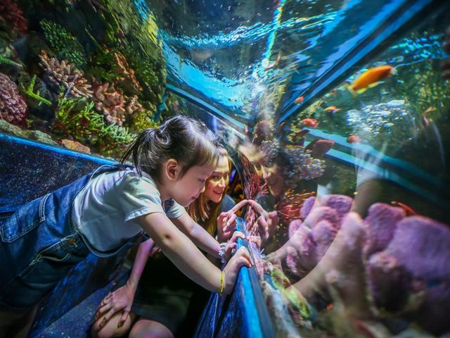 أجمل اماكن سياحية في بانكوك للاطفال