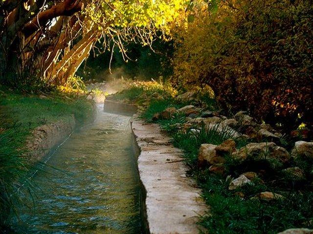المنتزه الوطني افران