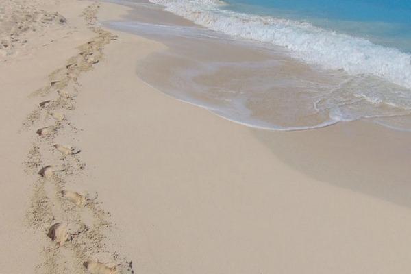 شاطئ الجونه مرسى مطروح