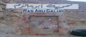 محمية ابو جالوم دهب
