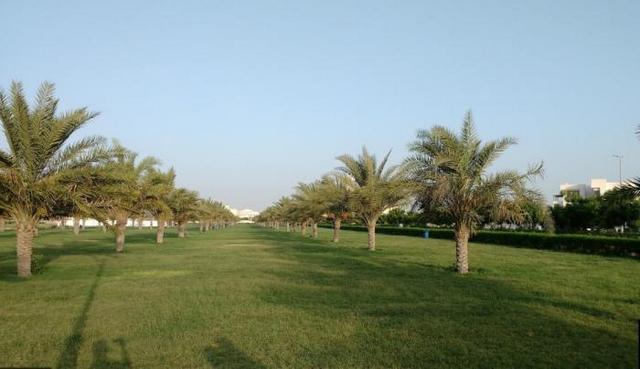 حديقة الجرف في عجمان