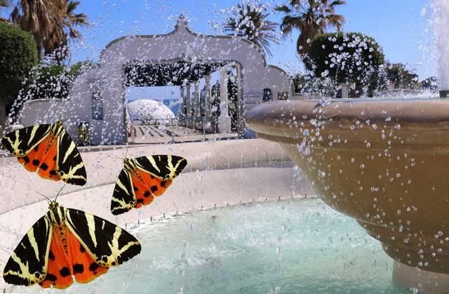 وادي الفراشات في فتحية تركيا