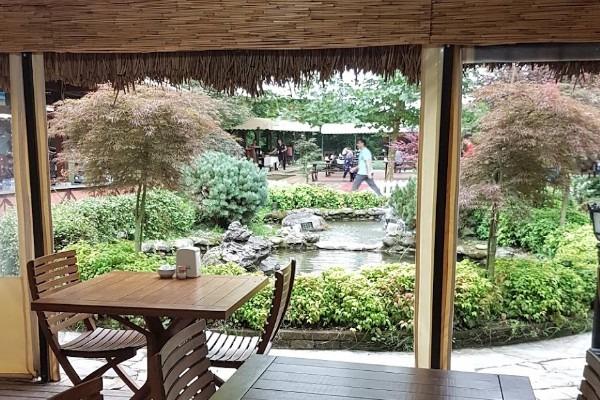مطعم ناتوركوي سبانجا