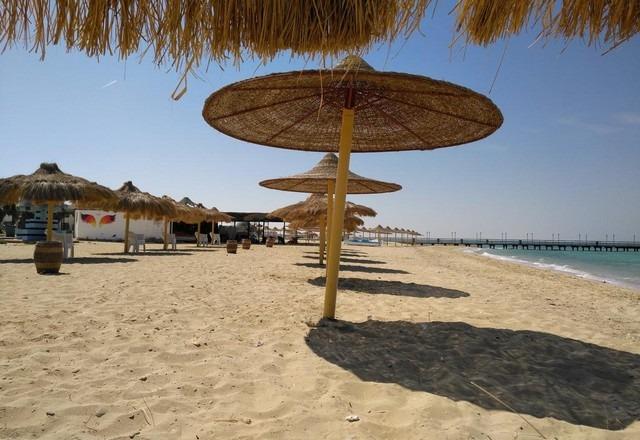 شاطئ النخيل في الجزائر
